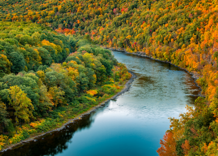 Delaware River named 2020 River of the Year